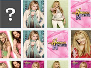 Hannah Montana Match It game