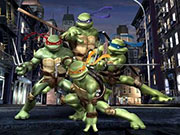 Play Turtle brawn game